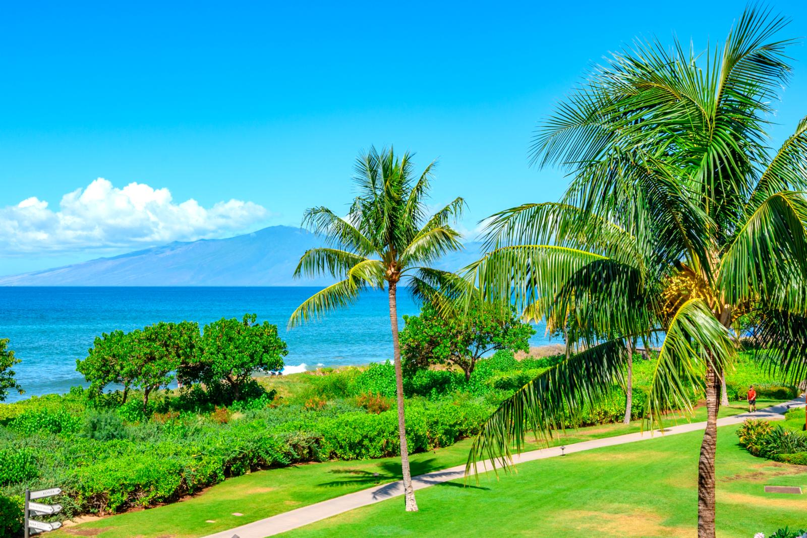 Stunning ocean and island views right from your balcony!