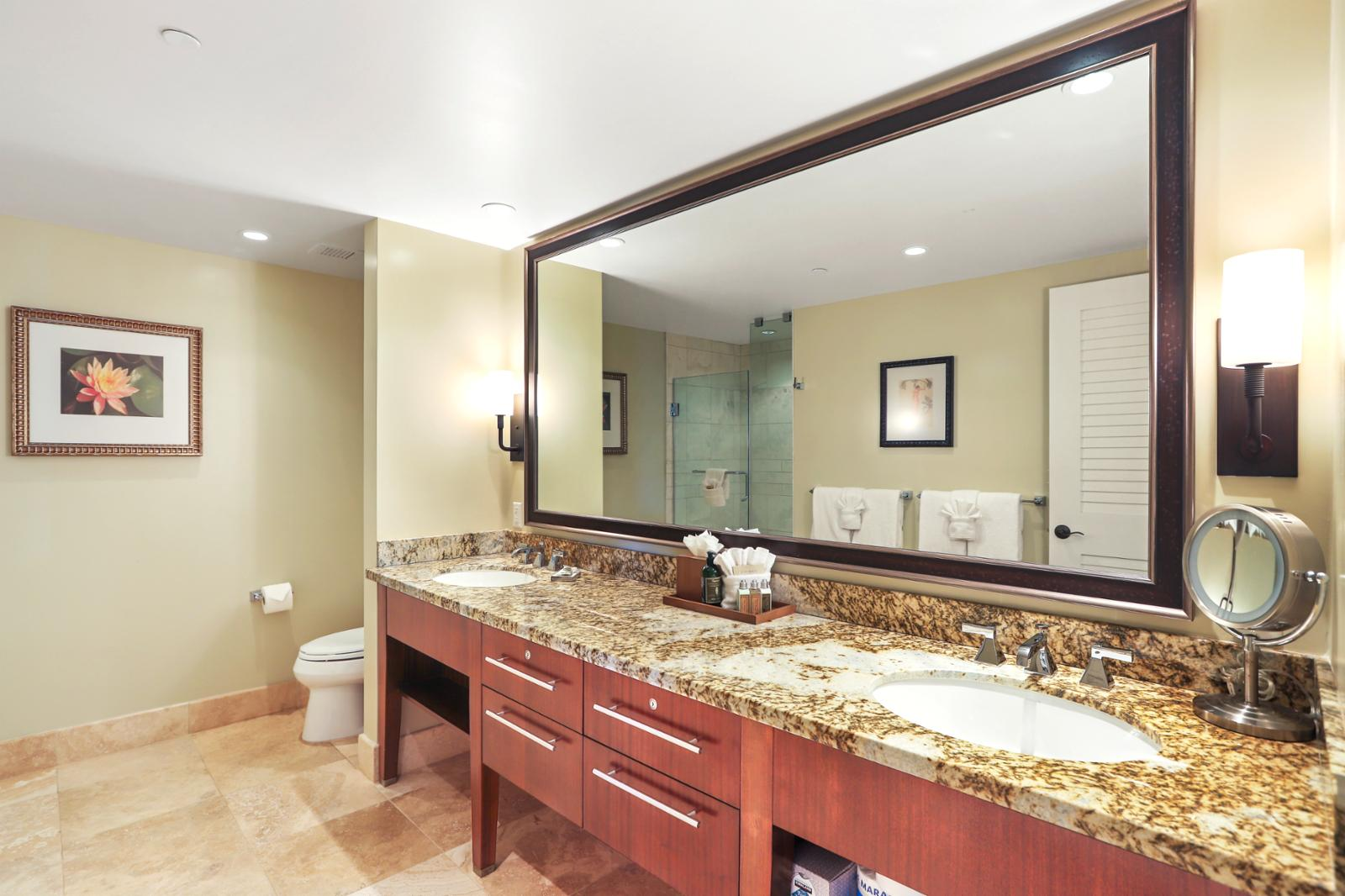 Dual sinks and large layout