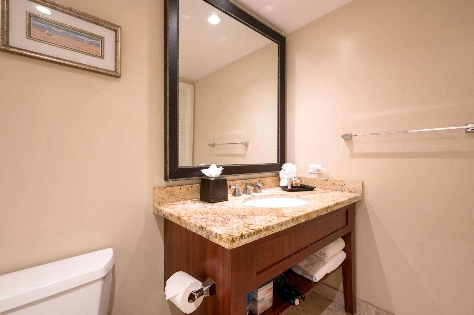 Large guest bathroom!