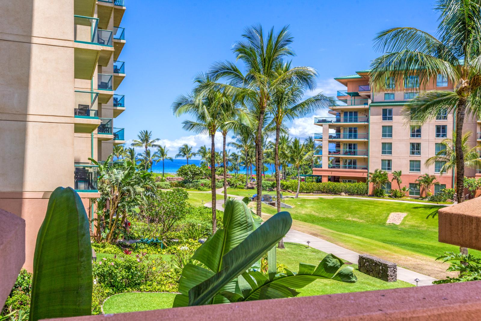 Gorgeous ocean views from the lanai - just steps to the beach!