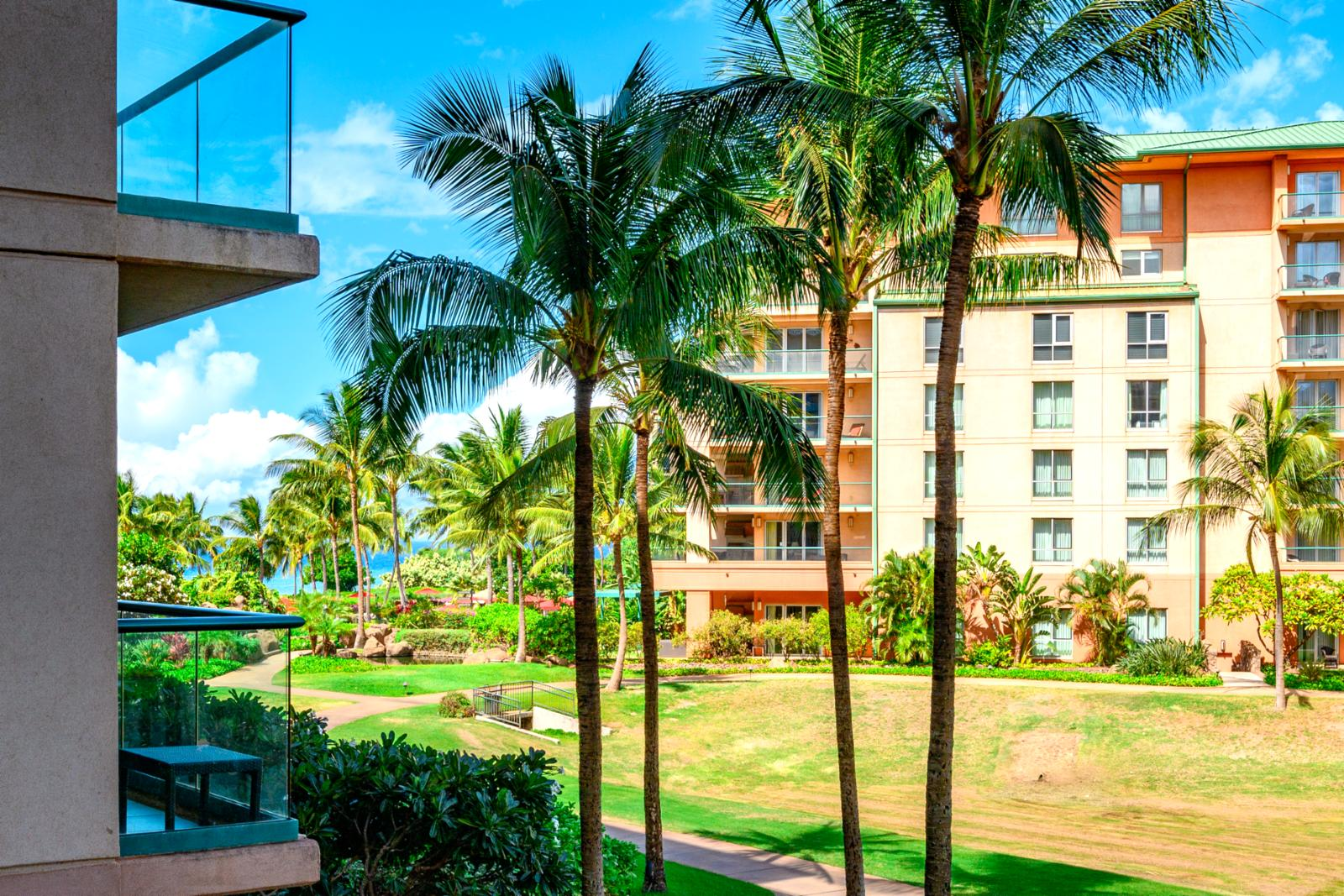 Tropical landscaping with walking paths to the beach