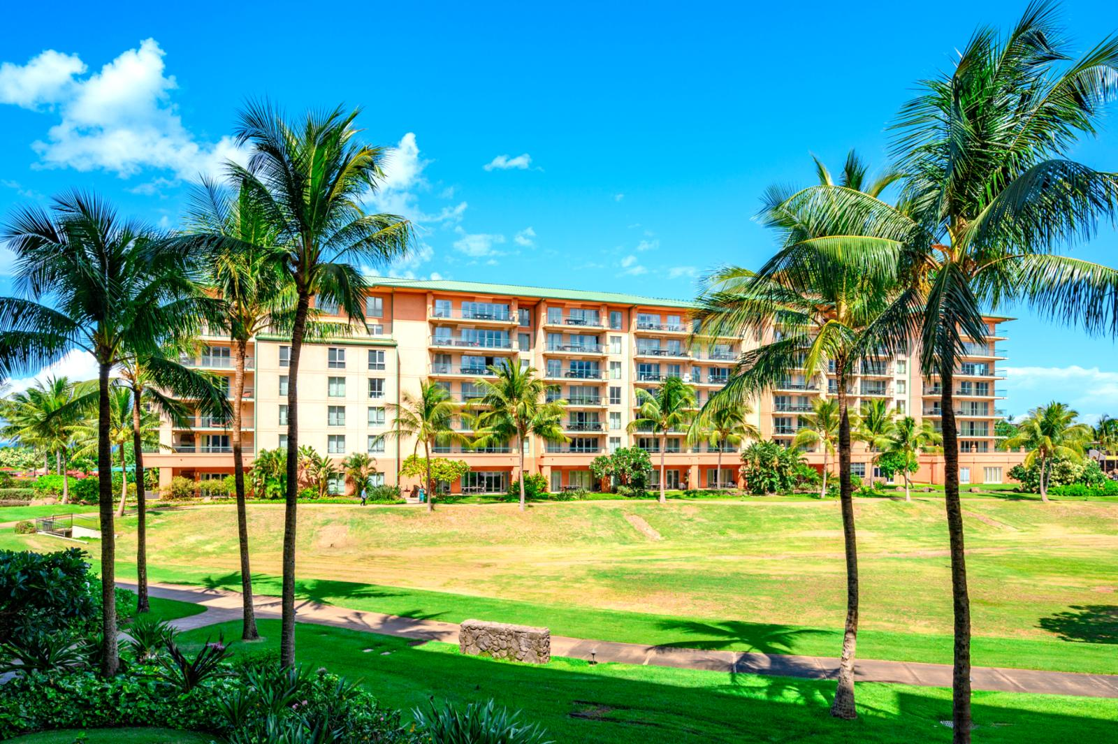 Enjoy the swaying palm trees and beautiful grounds