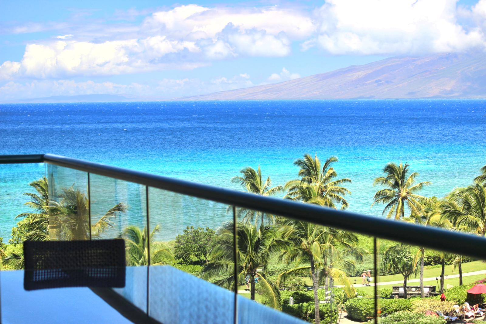 Sit back on your lanai and enjoy a cold beverage or a nice lunch while taken in the beauty.