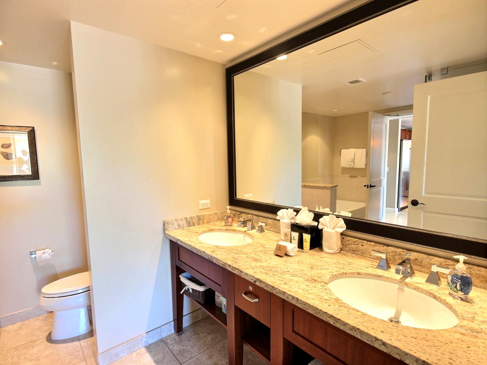 Large guest bathroom with access from living room and from guest bedroom for that added privacy.