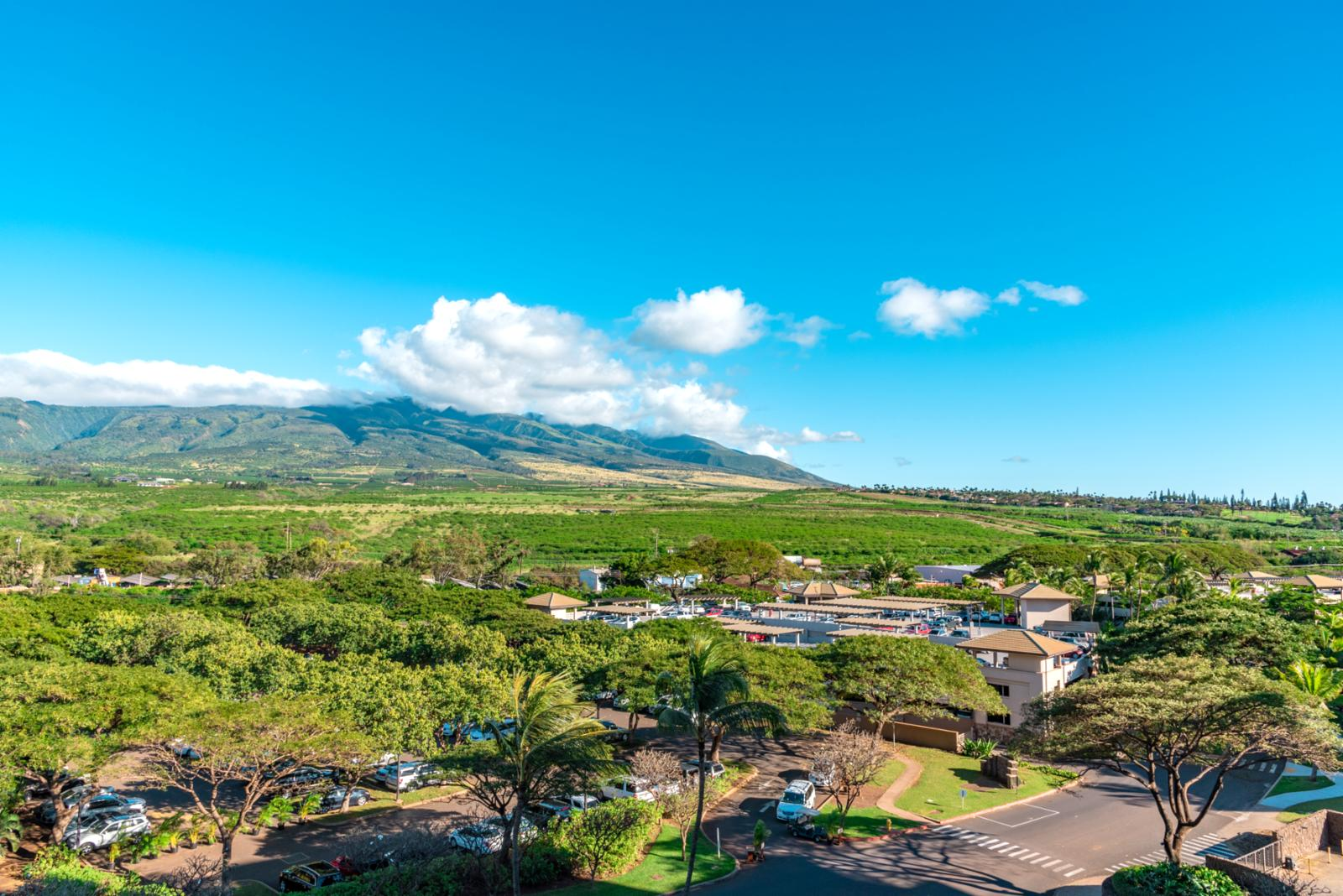 Sweeping views of the West Maui Mountains