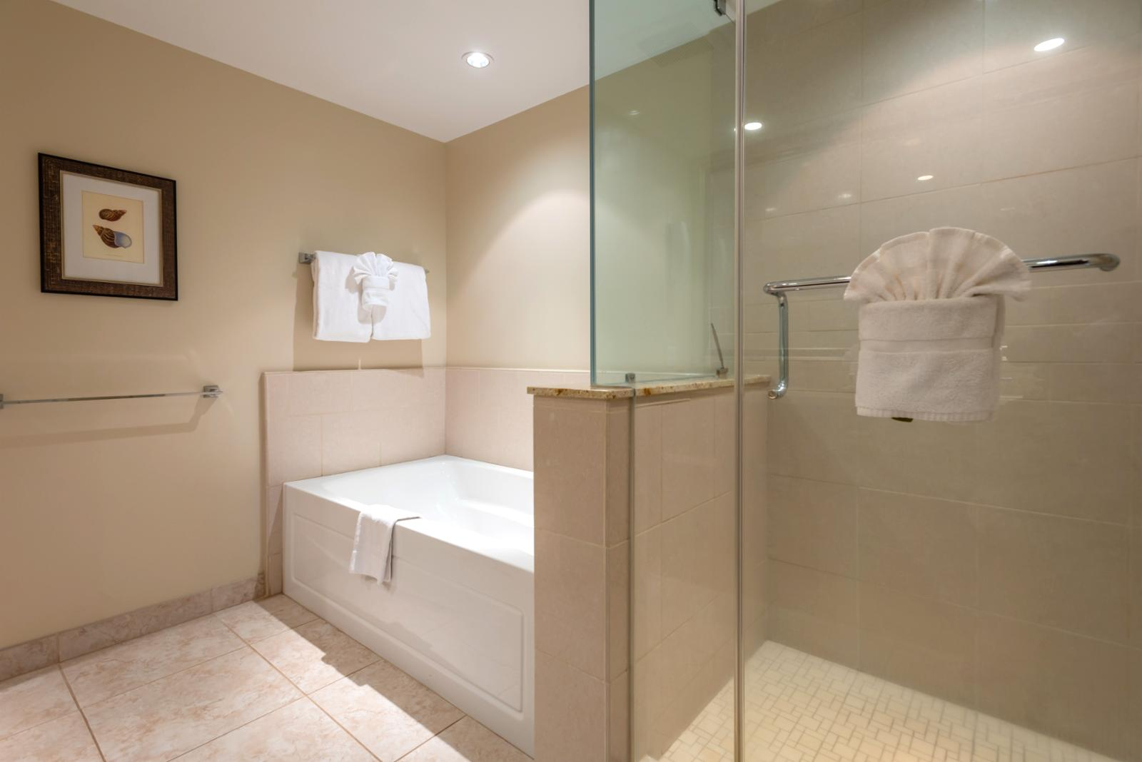 Shower and tub combination - perfect for families!