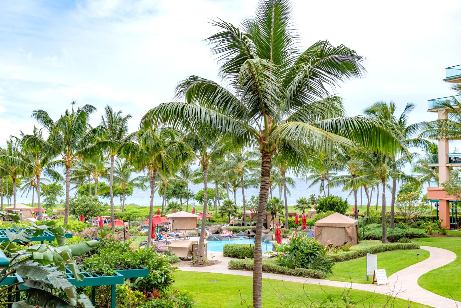 Wide span views of beautiful Honua Kai grounds!