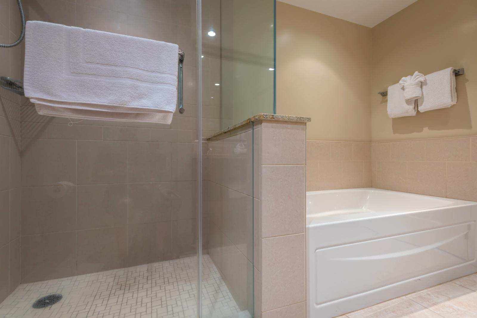 Floor to ceiling glass shower with adjacent tub for soaking