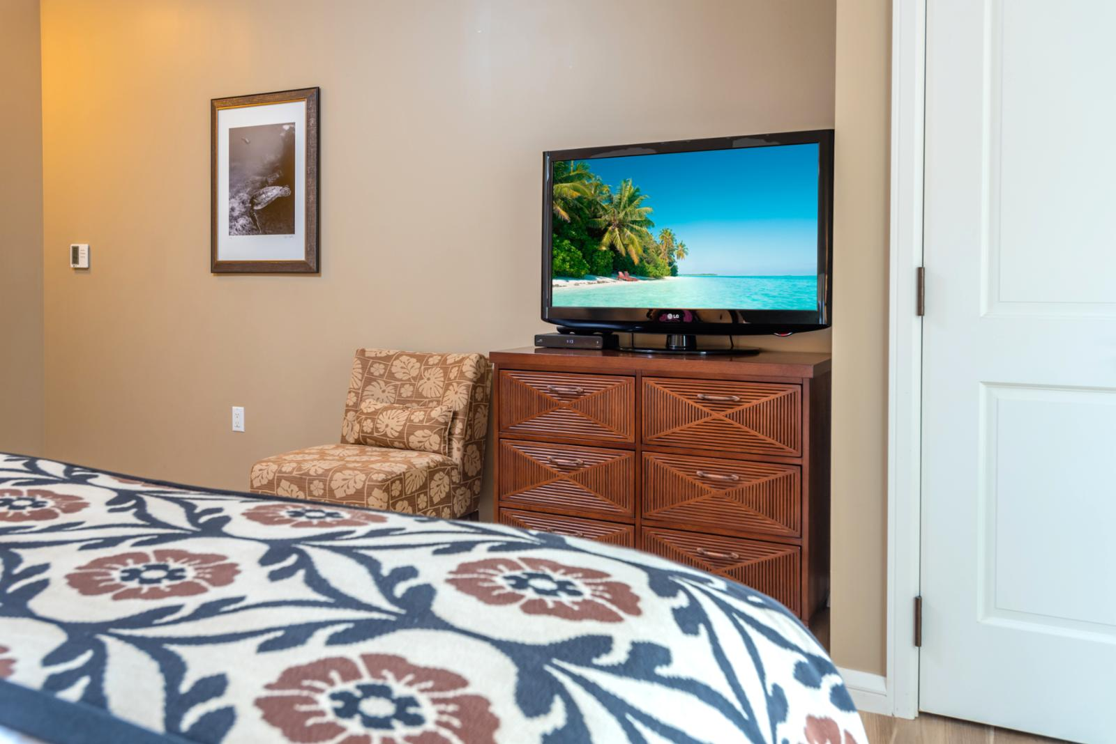 LARGE flatscreen television