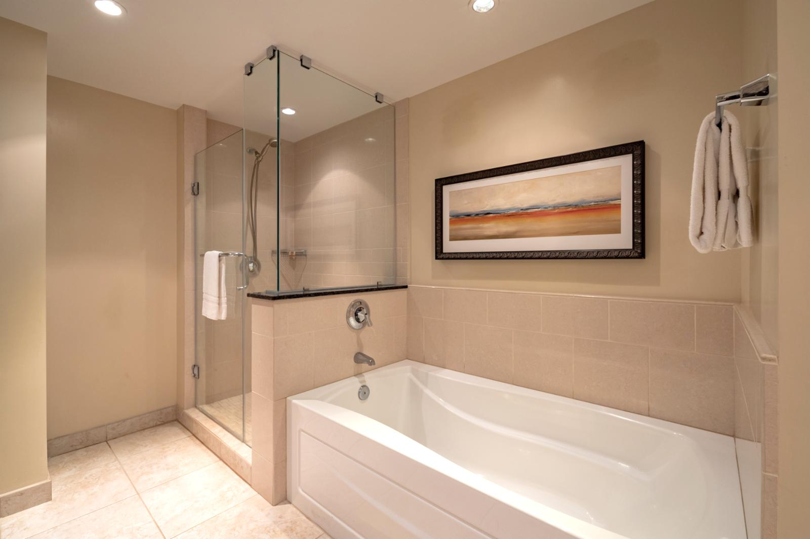 Floor to ceiling glass enclosed shower with magnificent adjacent tub