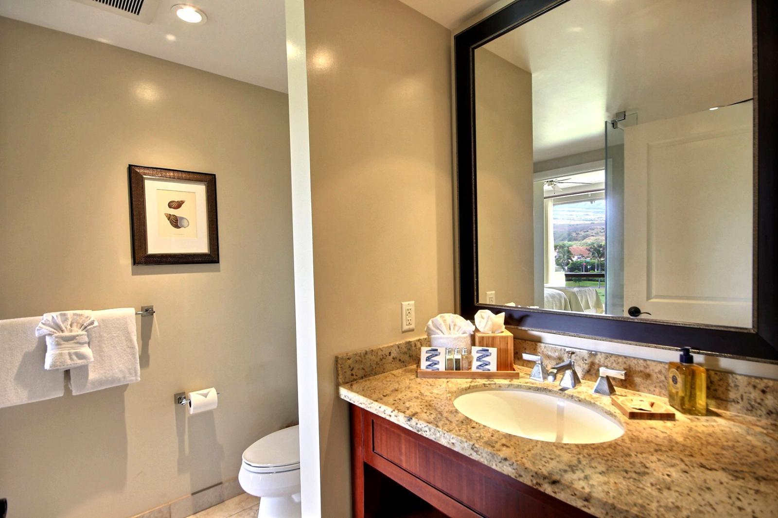 Entrancing 80 Bathroom Mirrors Hawaii Decorating Inspiration Of