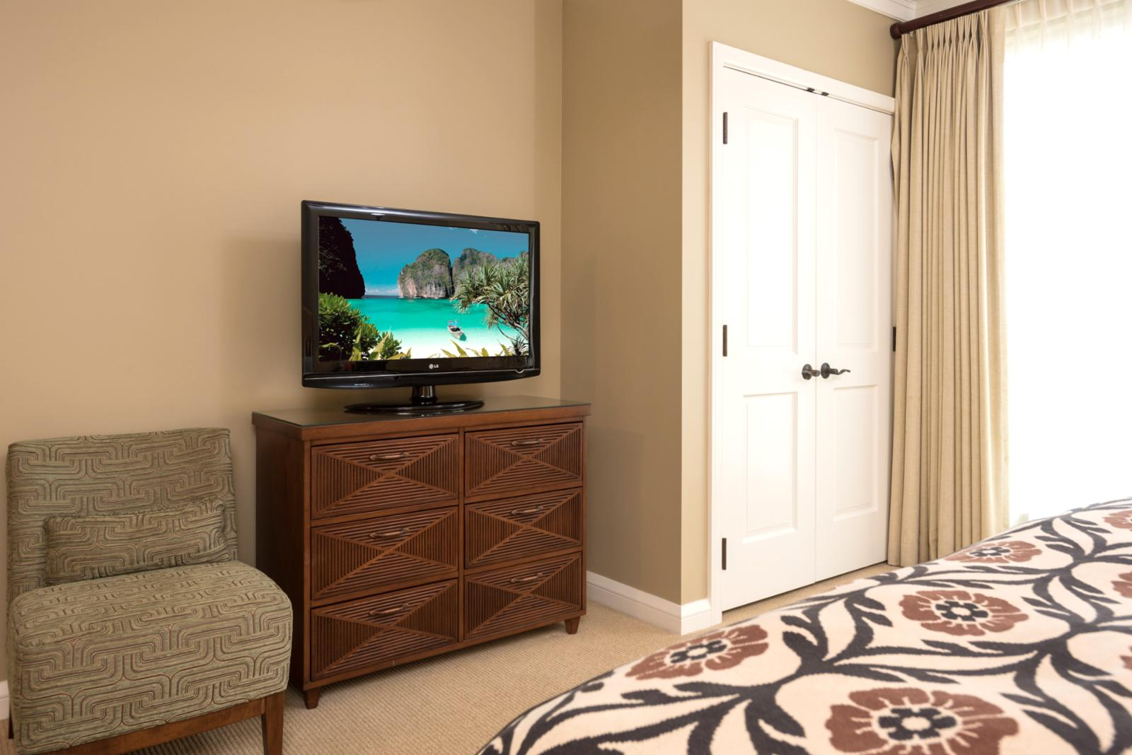 LARGE flatscreen television and additional closet storage