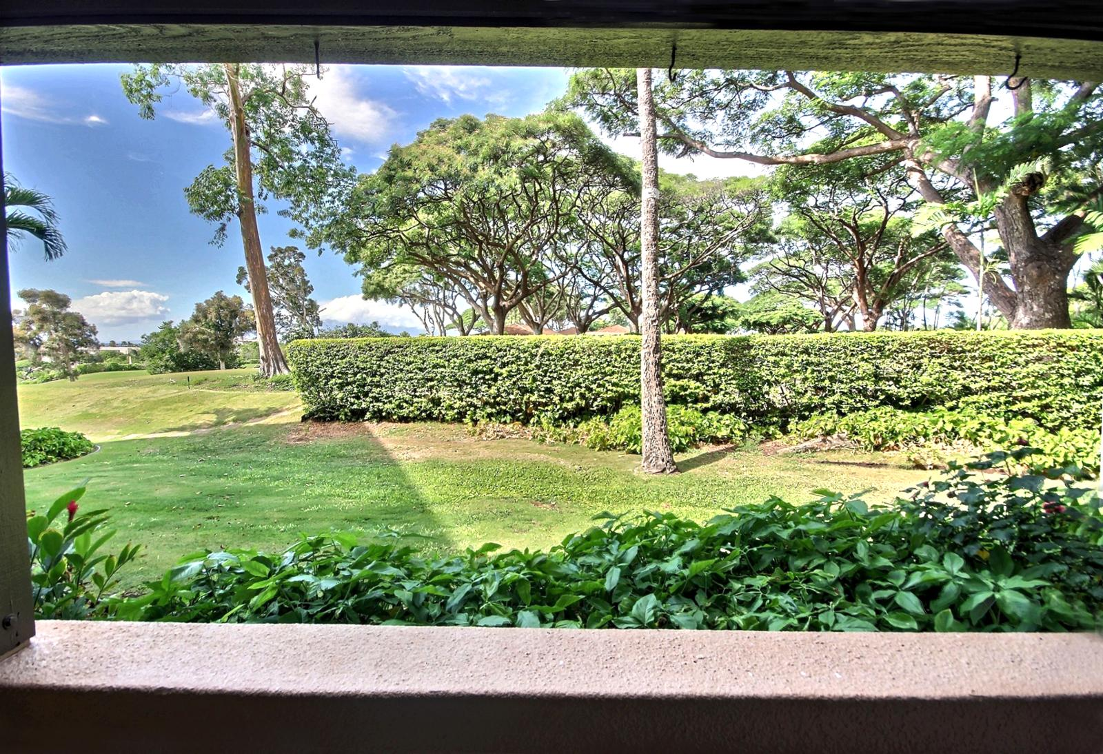 Beautiful well manicured garden view off the lanai.