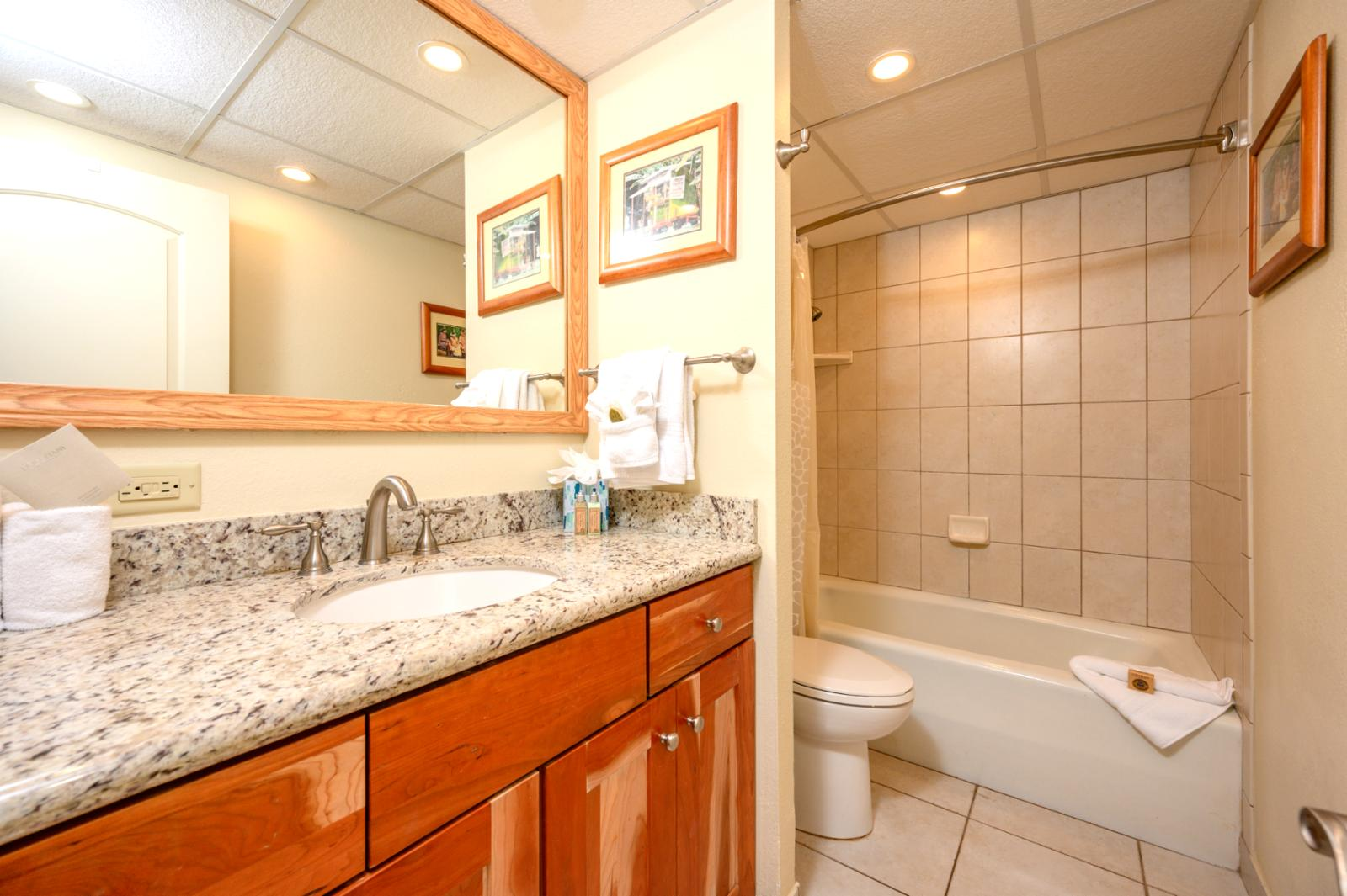 Guest bathroom with single vanity and soaking tub