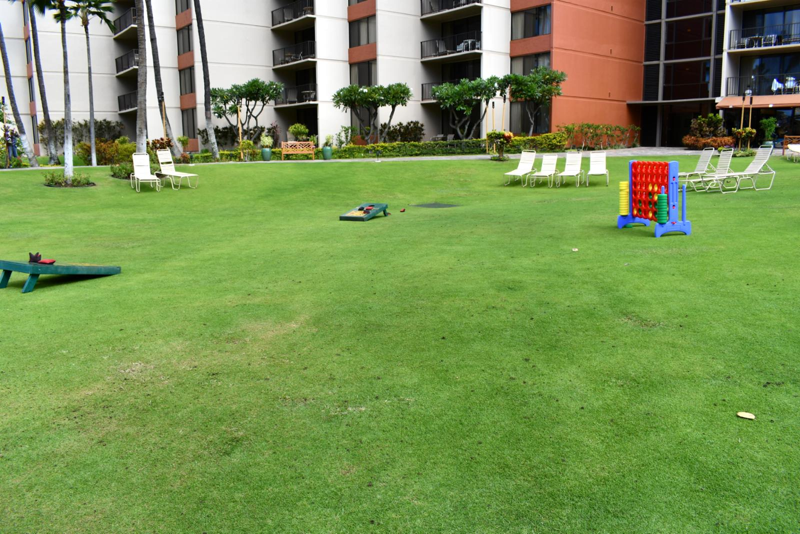 Grand lawn, perfect for family games and sun bathing