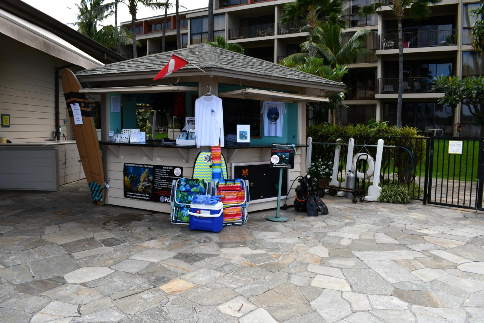 Beach activity stand should you like to surf!