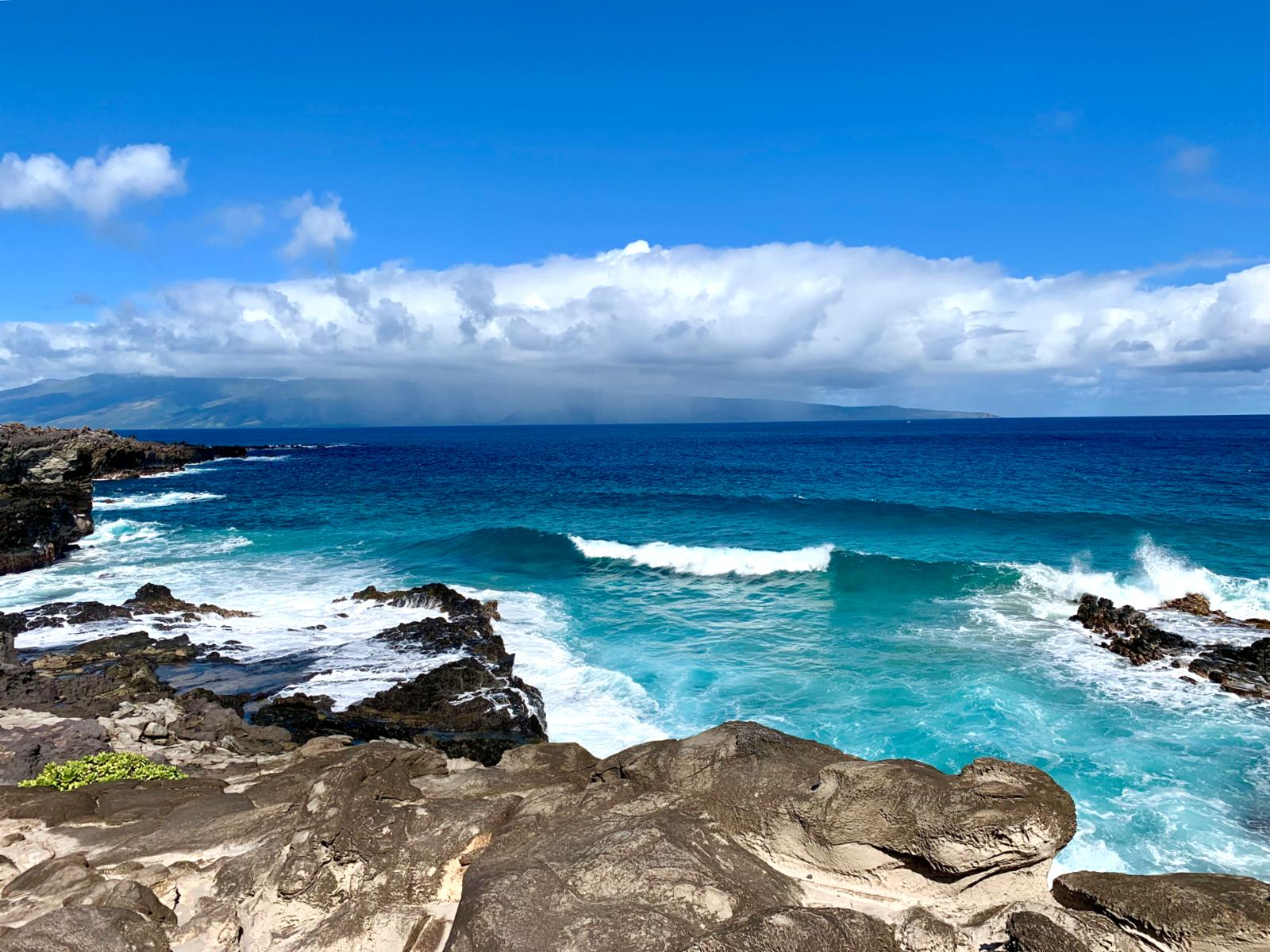 Stunning views along the Kapalua Coastal Trail, just a few steps away!