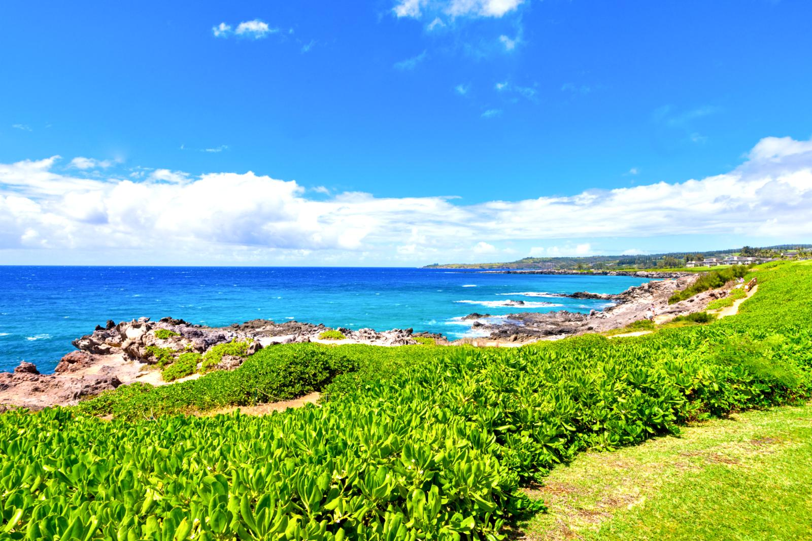 View along the Kapalua Coastal Trail, just steps from your patio!