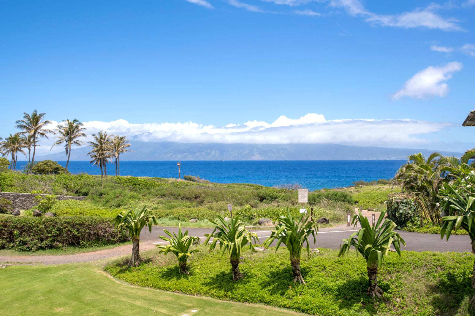 Hello, Molokai! Step out every morning and walk the world famous Kapalua Coast Trail!