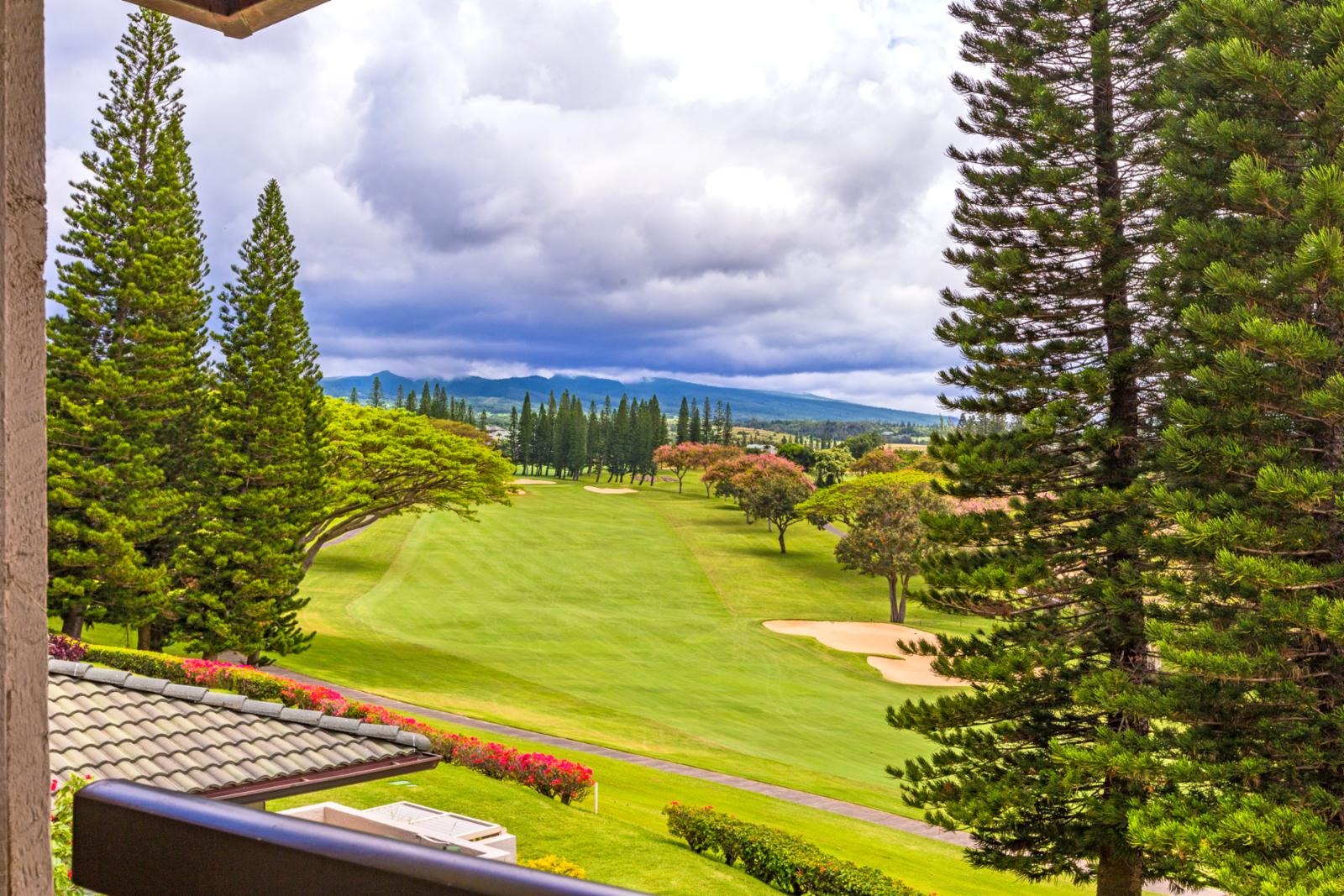 Walking distance to Kapalua Bay and Kapalua Coastal Trail