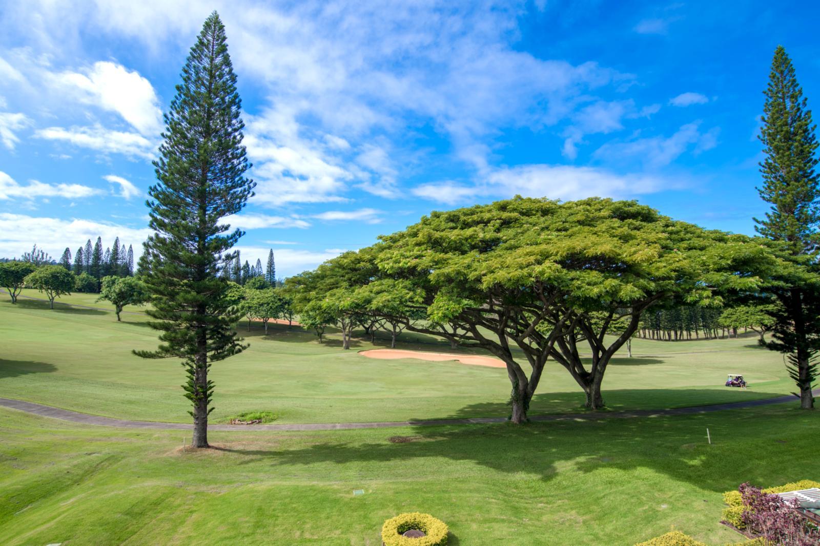 LARGE views from this beautiful Kapalua Golf Villa