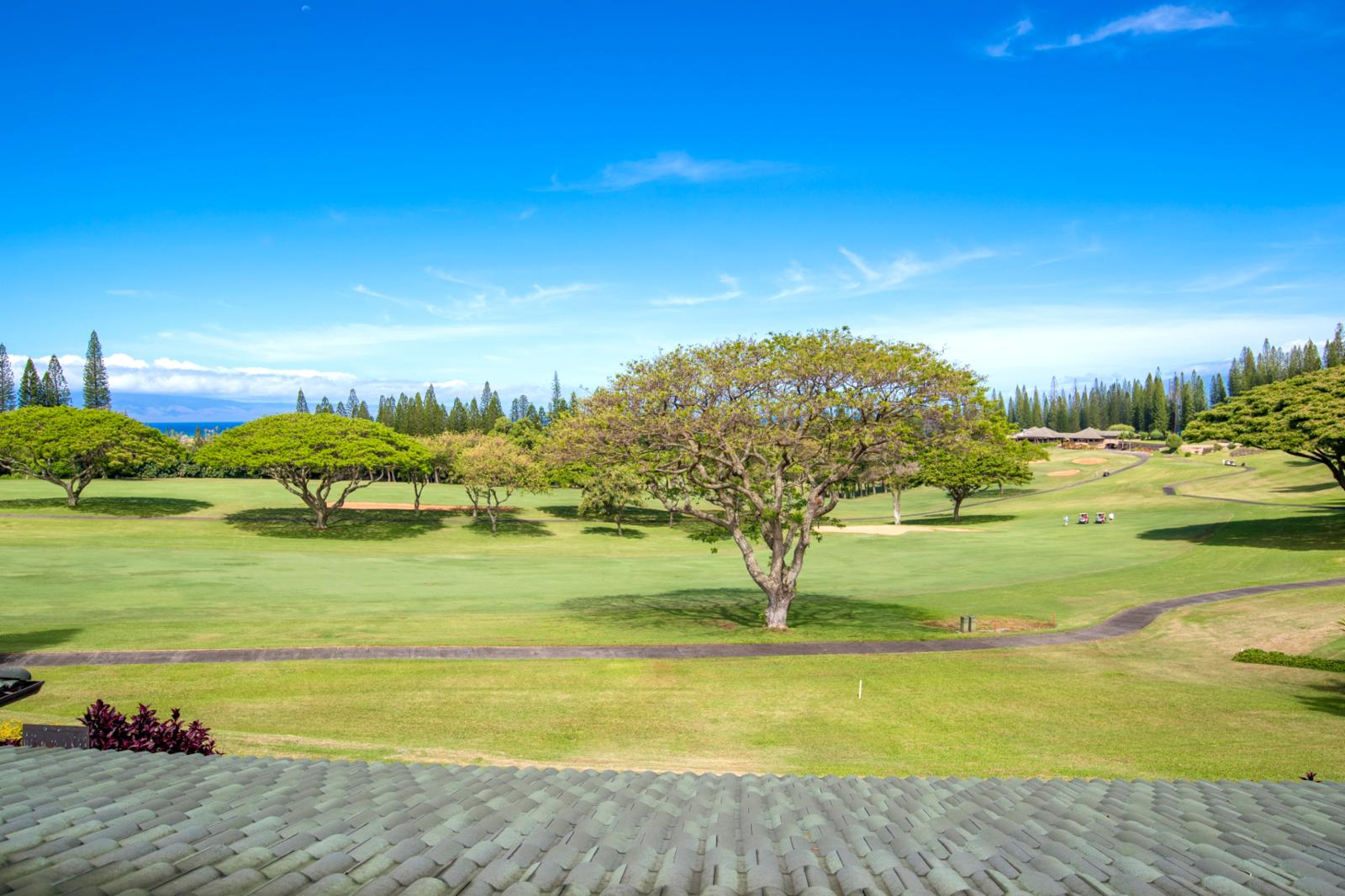 Kapalua Resort has it all!