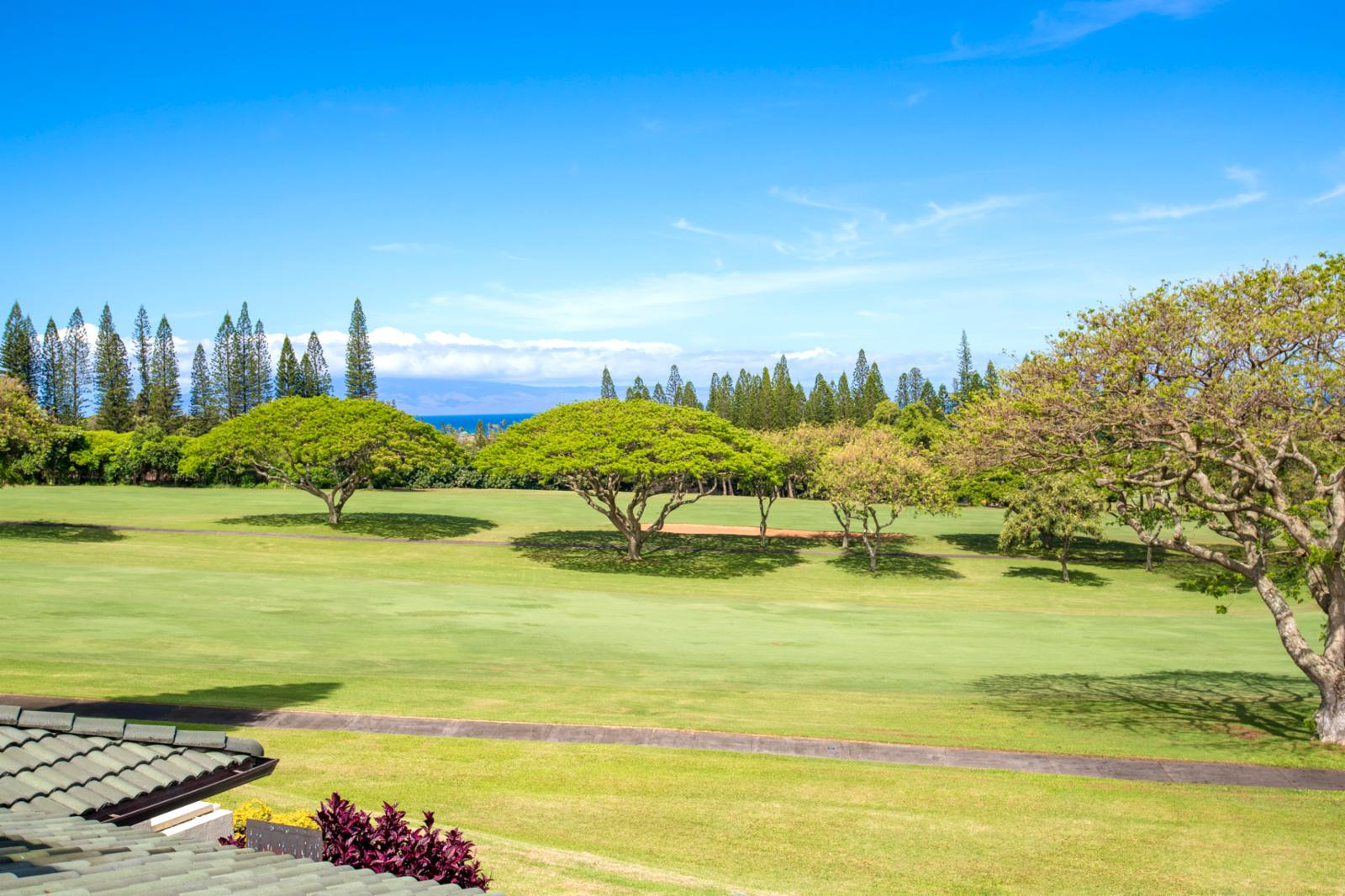 View from your private balcony, ocean and golf course views!
