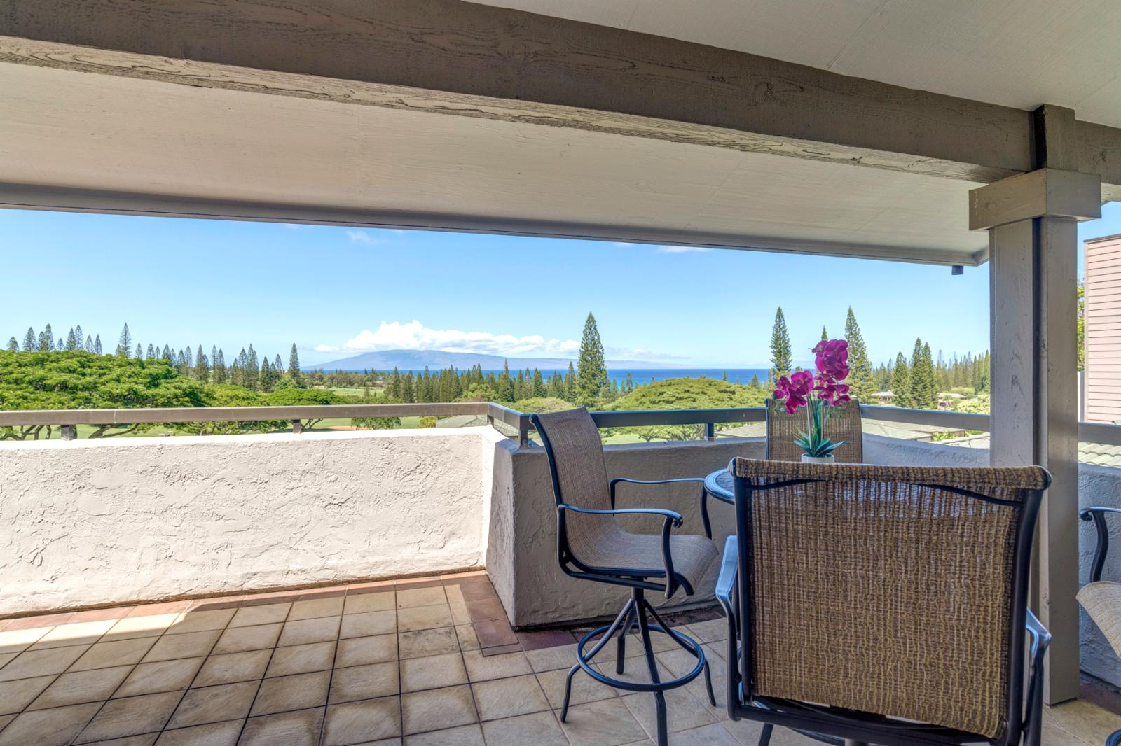 Large oversized baloney with wide span views of Kapalua