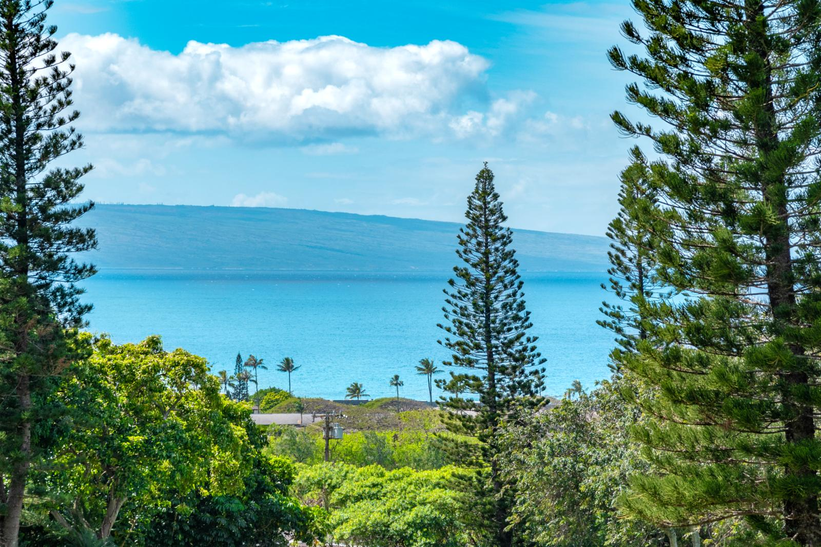 Island of Molokai from your balcony!