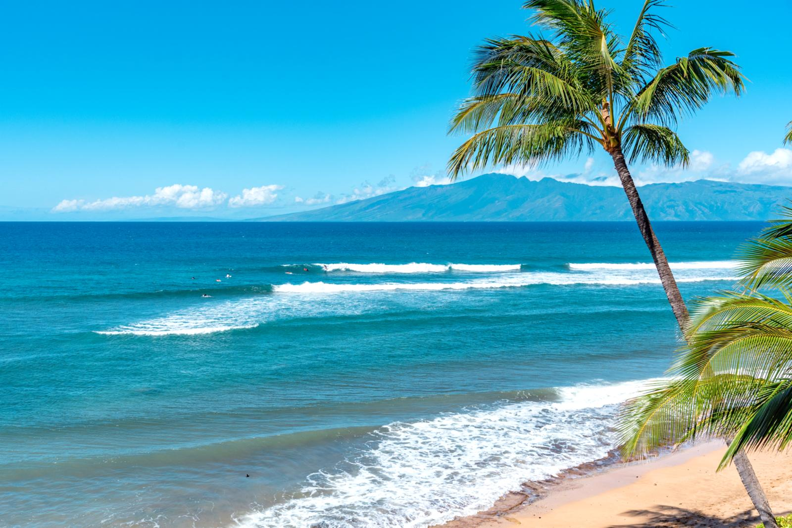 Surfs up! The beach is just steps away from your unit