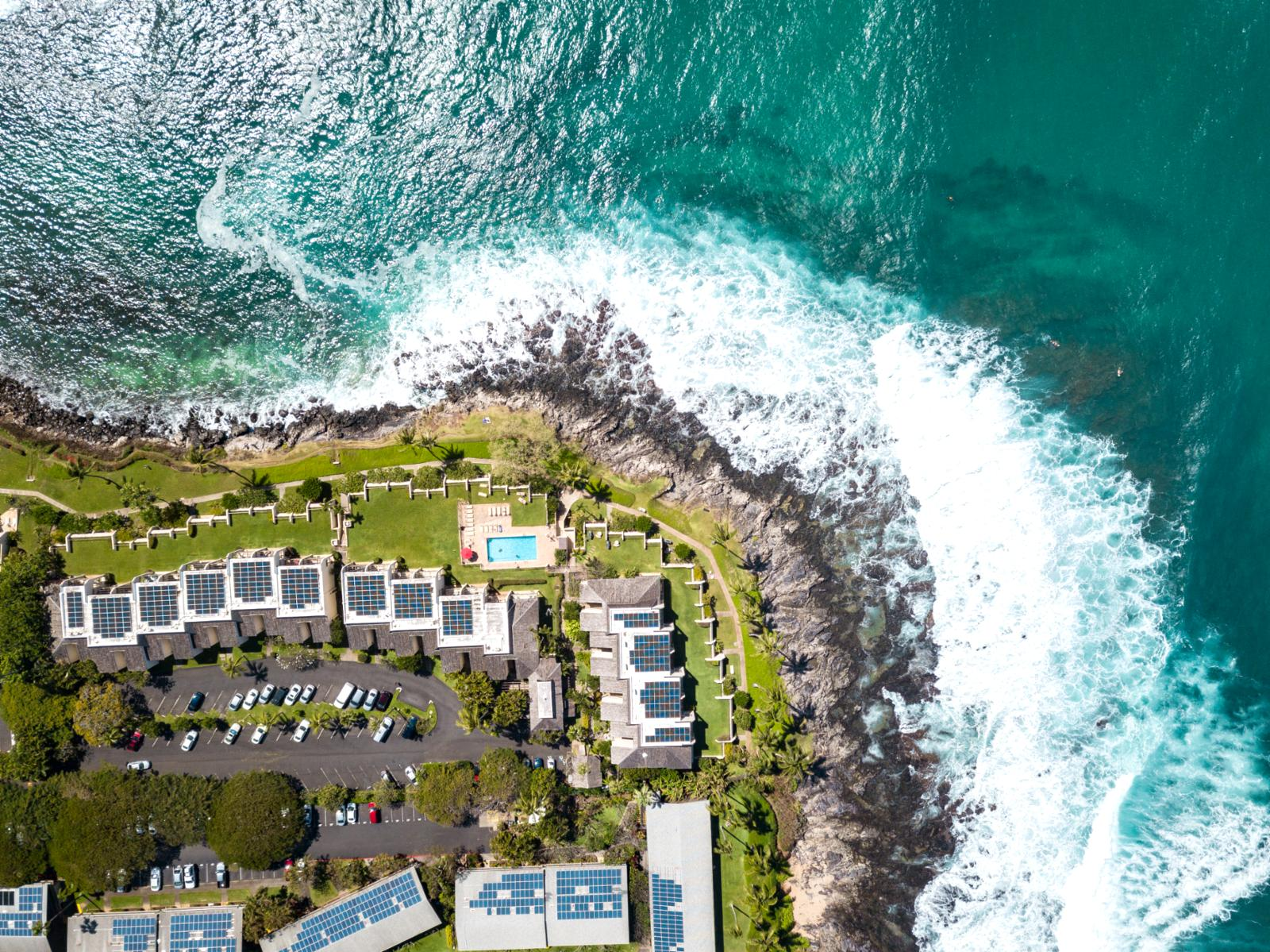 Welcome to Napili Point Resort!