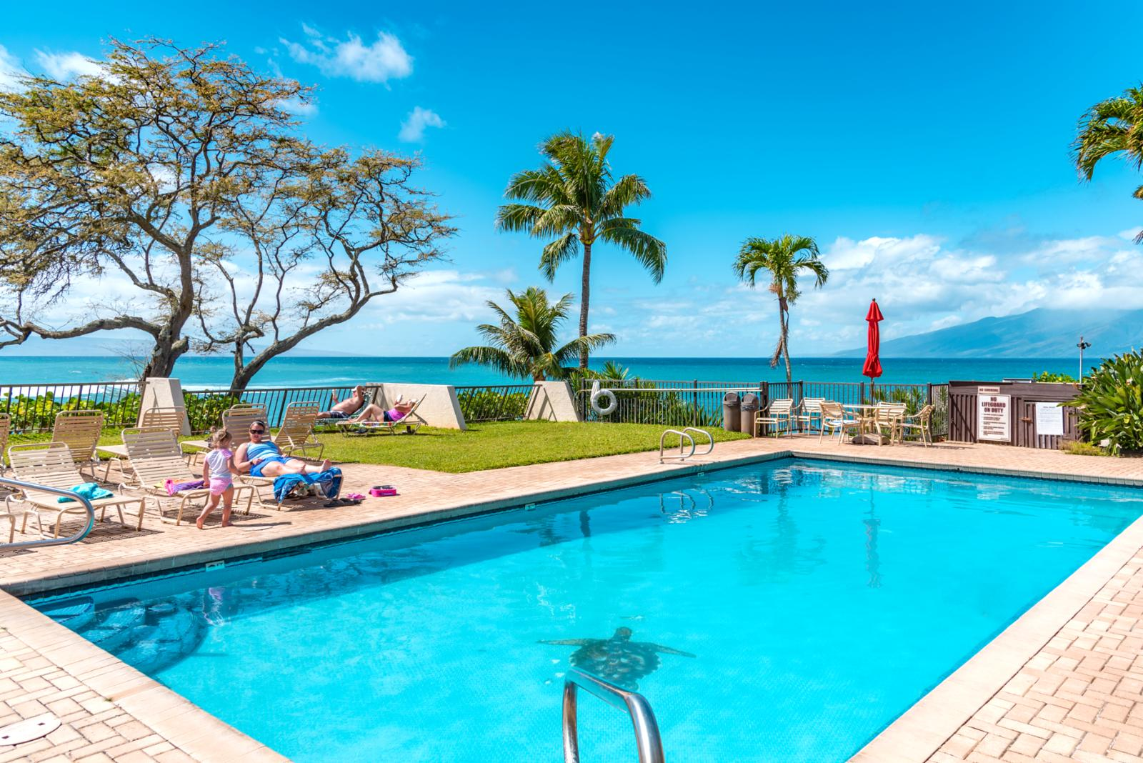 Napili Point Resort Grounds, direct oceanfront! 1 of 2 pool decks!