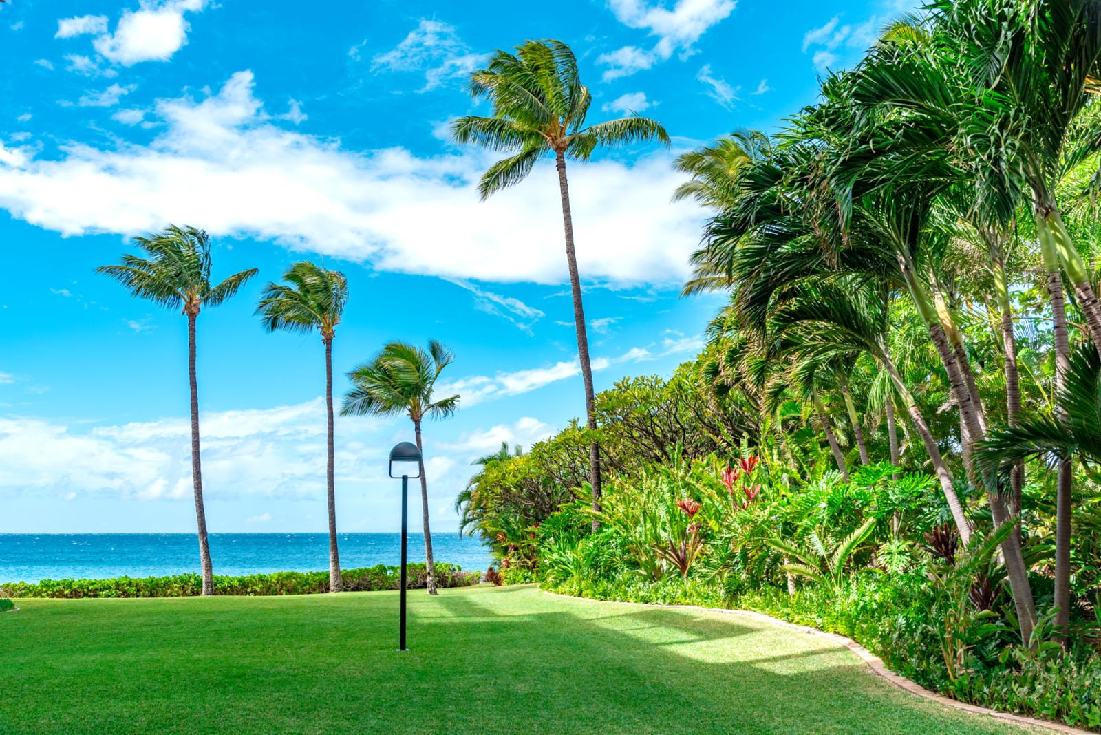 Welcome to the world famous Polo Beach Club located in the heart of Wailea!