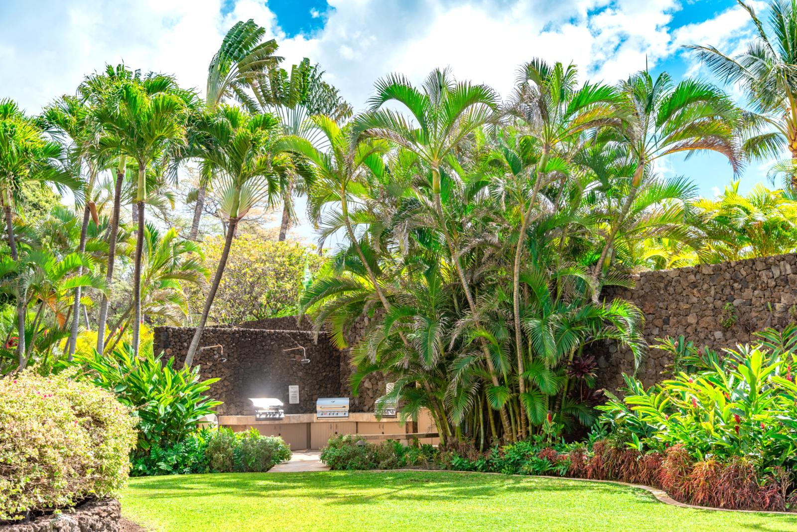 Natural Hawaii landscaping throughout