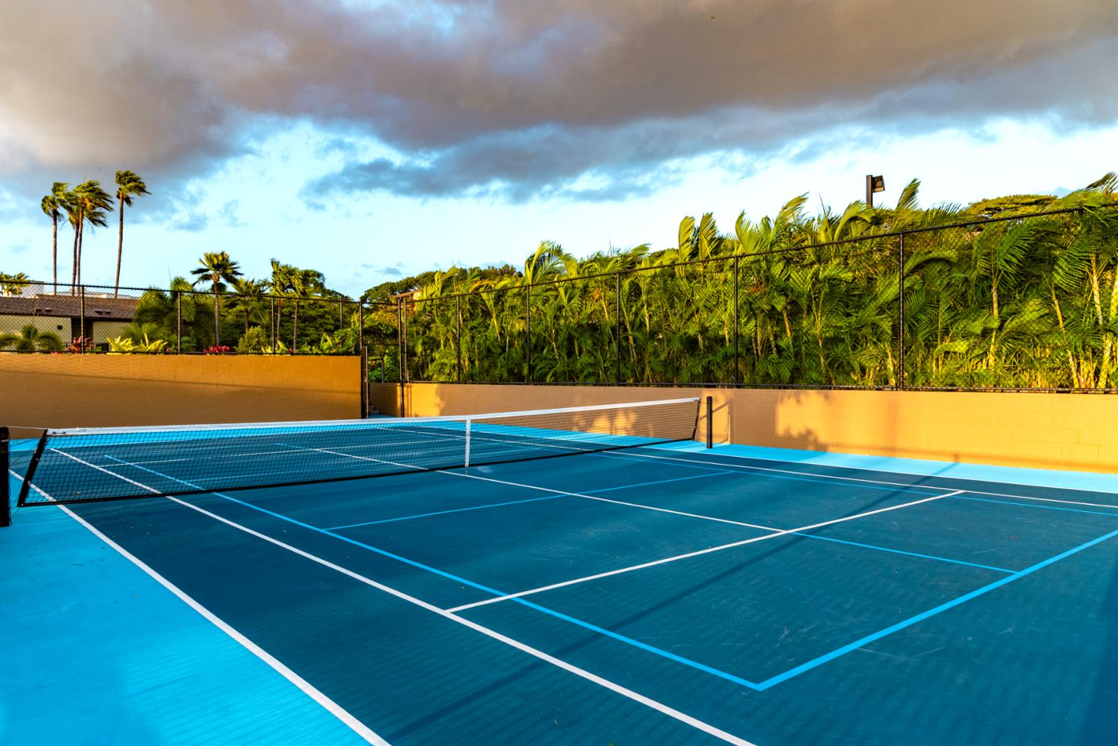 Tennis courts ready for your use!