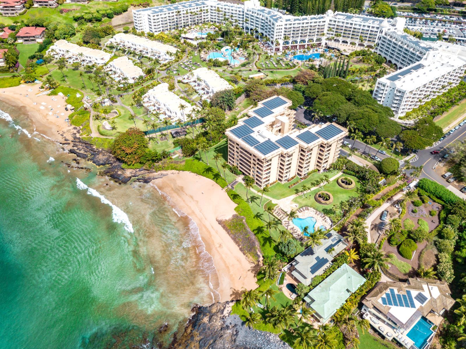 Kbm Hawaii Polo Beach Club Pol 109